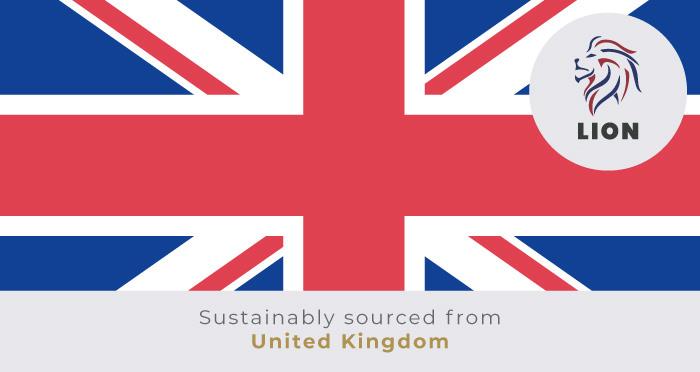Jubilee - Bloomsbury Oak Laminate Flooring - Descriptive 3